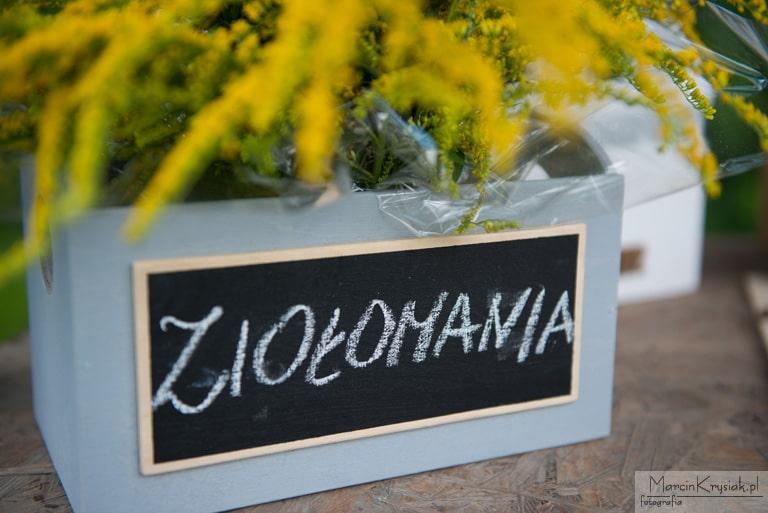 Zio³omania - Niepo³omice