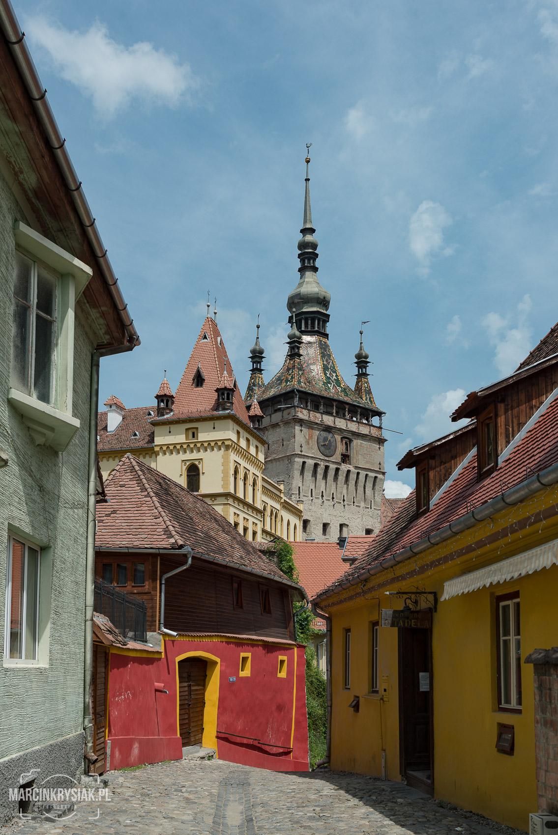 miasto, budynki, twierdza, Sighisoara, Rumunia