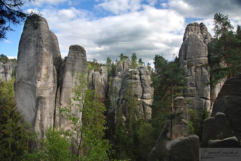 Skalne miasto, Adrspach, drzewo, skały, Czechy