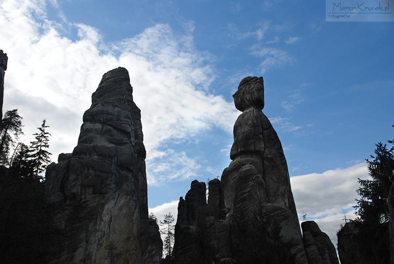 skały, drzewo, woda, sklane miasto, Adrspach, Czechy