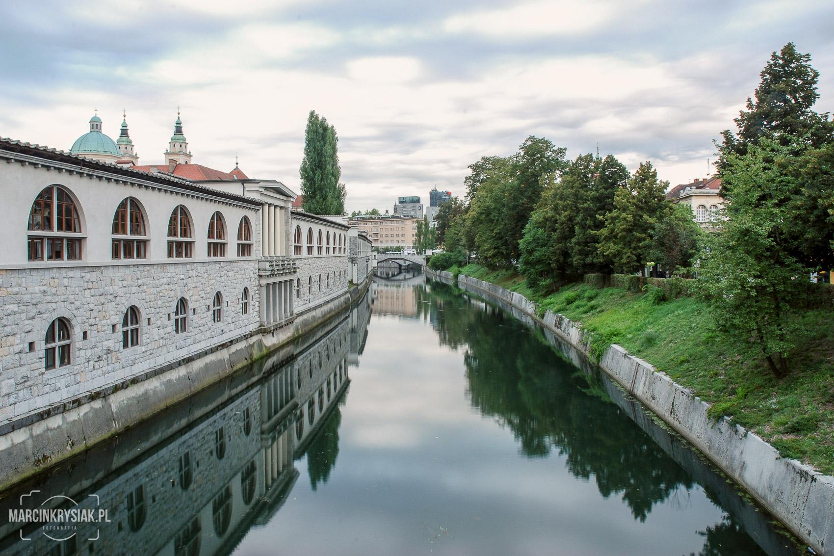 miasto, woda, Lubljana, Słowenia, stolica, drzewa, odbicie
