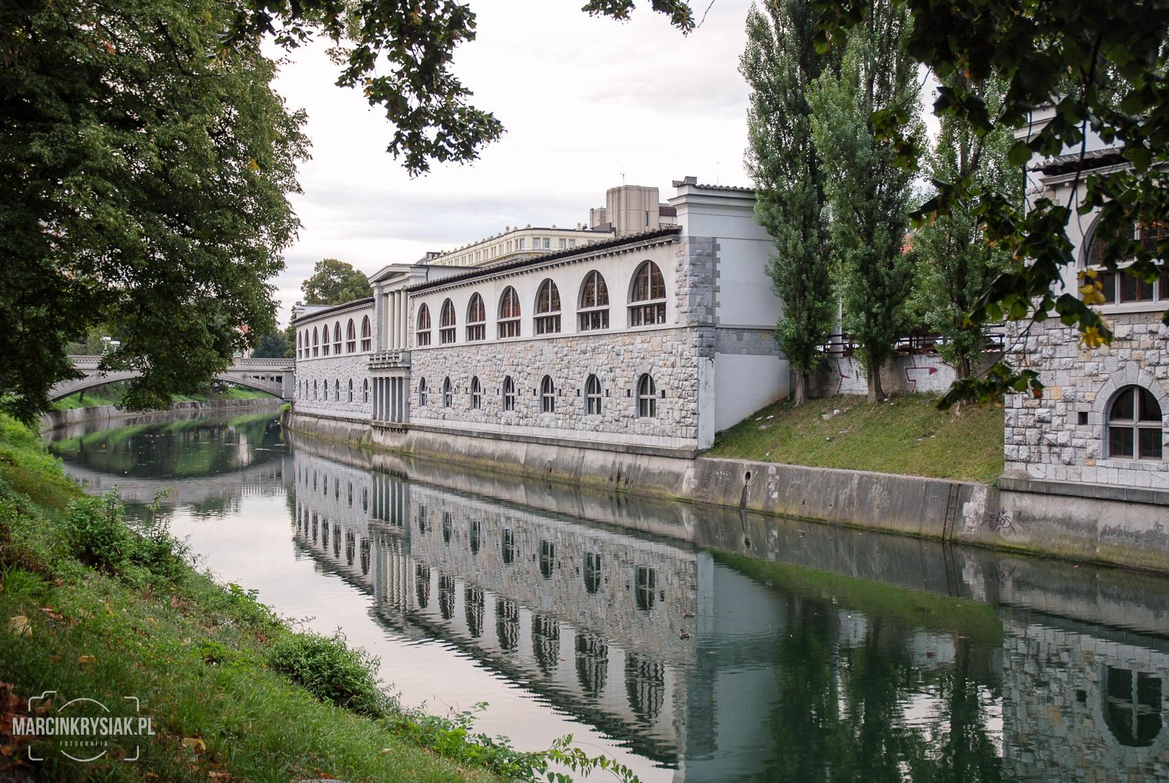 miasto, woda, Lubljana, Słowenia, stolica, drzewa