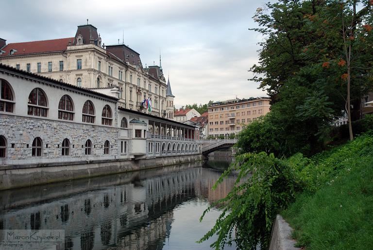 miasto, starówka, woda, rzeka, stolica, Lublana, Lubljana, Słowenia