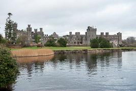 Irlandia - Ashford - styczeń 2009