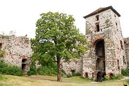 Polska - Tenczyn - sierpieñ 2007