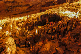 Słowenia - Postojna Jaskinia - sierpień 2007