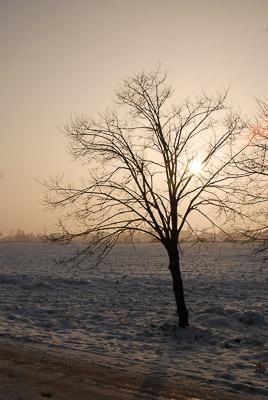 Polska - Wola Zabierzowska - grudzień 2007
